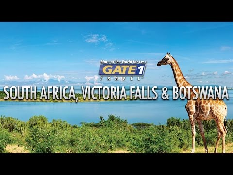 Gate 1 South Africa Highlights