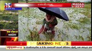 Heavy Crop loss to Srikakulam Farmers due to Cyclone