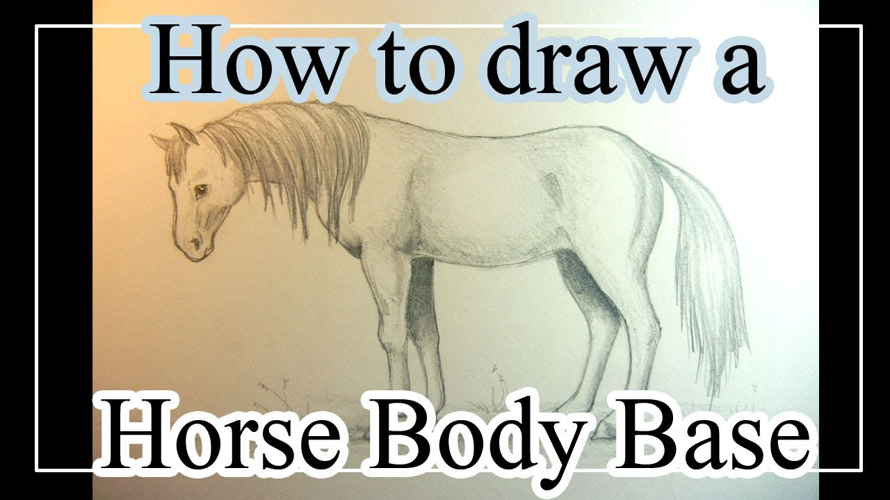 Horse Body Drawing How to Draw a Horse Body Base