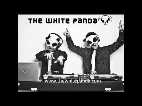 The White Panda - Why a G6 (Far East Movement // Supermode) Like A G6 Mashup