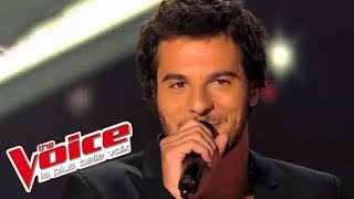 Elton John – Candle in the Wind | Amir Haddad | The Voice France 2014 | Blind Audition
