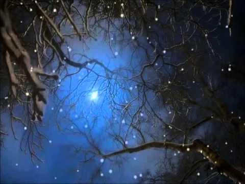 Annie Schilder & Kinderen voor Kinderen - Eeuwige Kerst