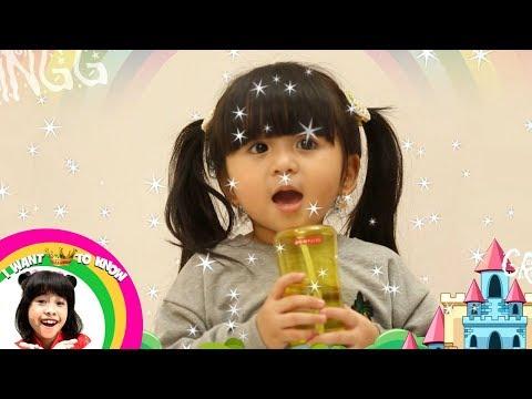 Cantik, Lucu, Baby Moonela Juga Jago Nyanyi Barat  - I Want To Know (7/1)