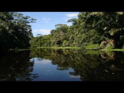 Jakob Dylan - Costa Rica