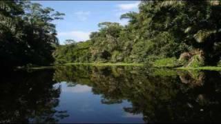 Watch Jakob Dylan Costa Rica video