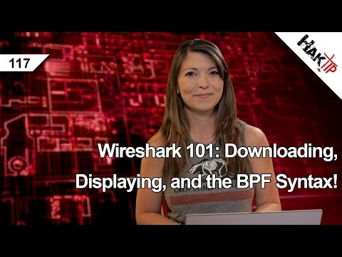 Wireshark 101: Downloading. Displaying. and the BPF Syntax! HakTip 117