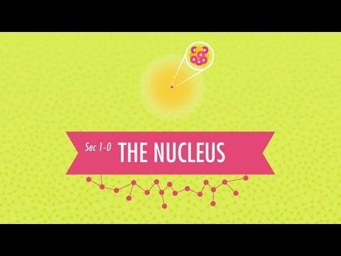 The Nucleus: Crash Course Chemistry #1