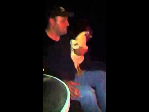 Steve & Big Cock Dancing video