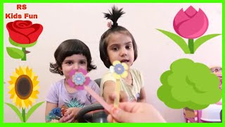 Sing With RS babies Flowers Finger Family song