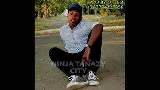 avc NINJA TANAZY  CITY PRO BY DJ LEO