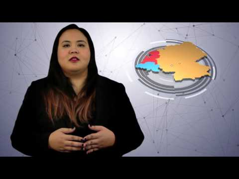 Malaysia Airlines Part 1 [BFM CASE STUDY]