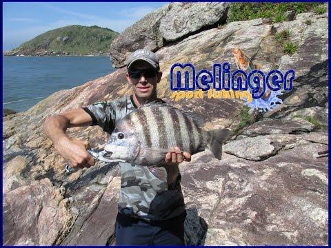 Pescaria De Costão - 2