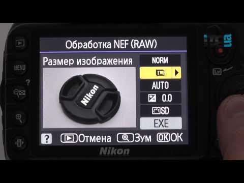 Обзор Nikon D3100