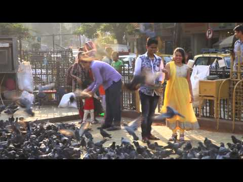 Jeev Rangala Marathi Song video