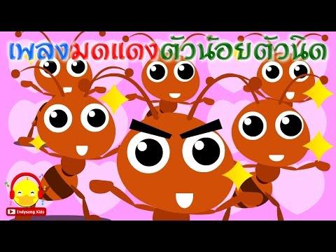 เพลงมดแดงตัวน้อยตัวนิด ♫ เพลงเด็กอนุบาล Indysong Kids