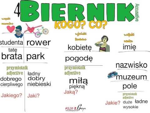 POLISH FOR BEGINNERS. Biernik (the Accusative Case)