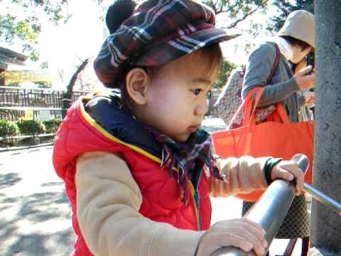 22 11 20  徳山動物園 ミーアキャット 036