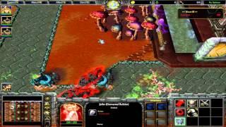 WC3 - Frozen Throne: Blizzard TD (Tower Defense) in 48 min!