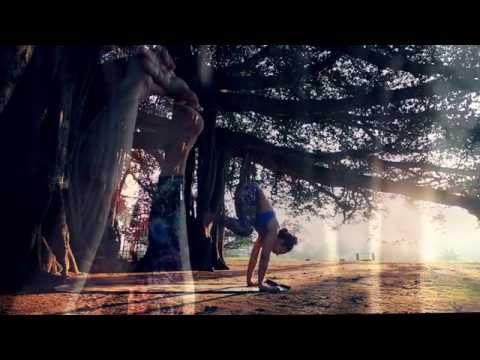 Yoga at the banyan tree