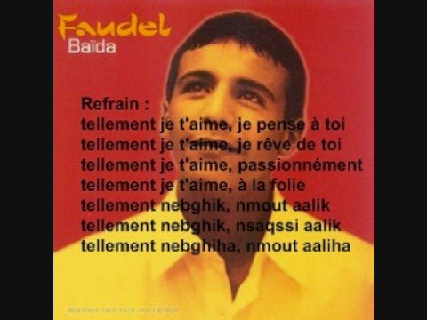 Image video Faudel - Tellement n'brick