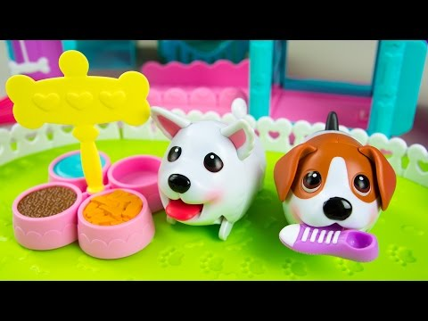 Chubby Puppies Ultimate Dog Park + Tunnel Playset | Kinder Playtime