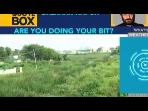 World Environment Day: PM Modi Leads Planting Drive