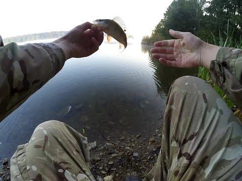 рыбалка на реке шат