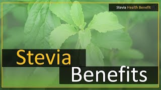 Stevia leaf extract benefit