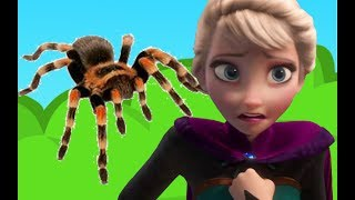 ELSA FART SPIDERS: PART 1! FROZEN Elsa & Anna dolls - Elsa must run from farting spiders!