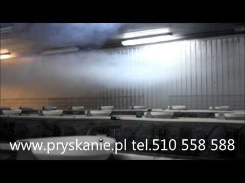 Dezynfekcja królikarni ( fermy królików hodowlanych ) - zamgławianie termiczne PULSFOG
