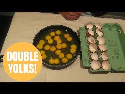 超絶ビックリ!卵を割ると全部黄身が2つ!宝くじが当たるよりもスゴイかも!?