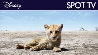 Le Roi Lion - Spot TV :