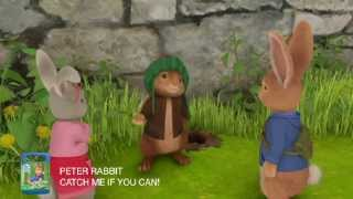Peter Rabbit - Catch Me if You Can | DVD Preview