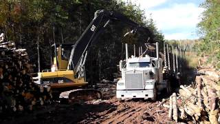 Cat 320C Log Loader Loading Logs