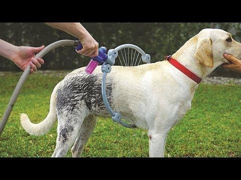 ये गैजेट बड़े काम का है || Amazing Gadgets Every Pet Owner Must Have