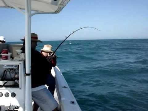 Shark Fishing Naples & Marco Island FL: Capt Jimbo