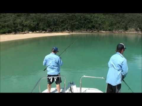 Scawfell Island, Refuge Bay, Fishing Paradise