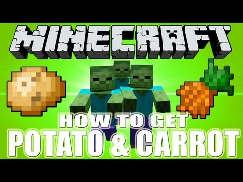 How to find carrots in minecraft
