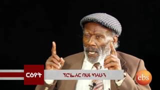 Reyot ርዕዮት: Talk With Dr. Bahiru Kassahun & Dr. Woldearegay Wubneh - Part 2