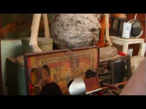Quick Visit To Obscura Antiques & Oddities video