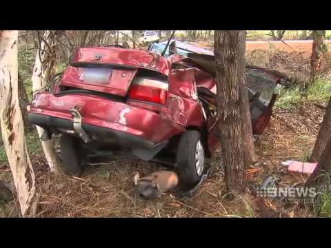 Botched Robbery   9 News Perth