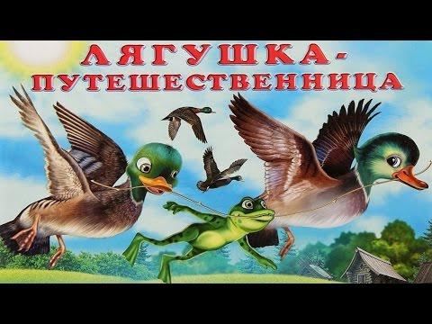 ЛЯГУШКА ПУТЕШЕСТВЕННИЦА.frog dares аудио сказка: Аудиосказки - Сказки - Сказки на ночь