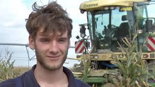 download lagu Kolbenfresser Teil 2 - Heiß Auf Mais Maisernte 2012 gratis