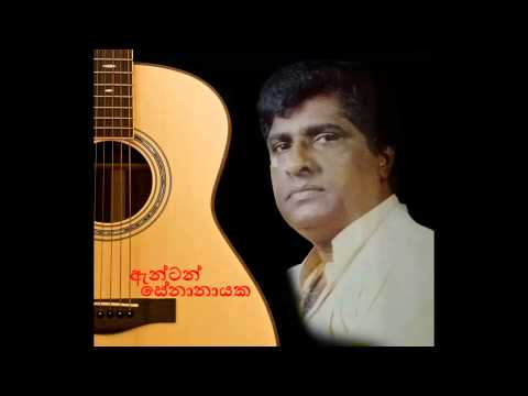 Duraka Pavi Giya - Anton Senanayake video