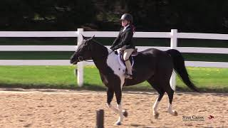 CarliAnn Kooi & Paint Me A Picture - Eq 11 & Under Class 306 - Ledges Spring Warm Up II May 2019