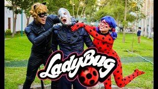 LadyBug Show Completo - Lima Perú