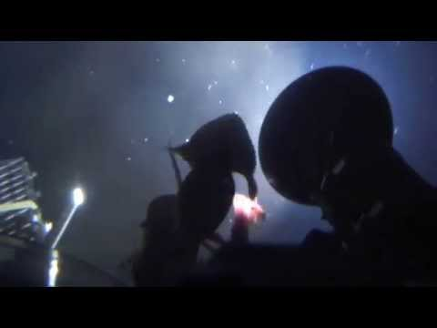 Squid Attack Submarine in Bering Sea