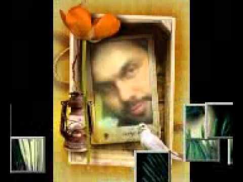 O Nadan Parinday By Mohsin Razaji.mp4 video