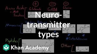 Types of neurotransmitters | Nervous system physiology | NCLEX-RN | Khan Academy