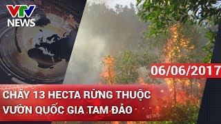 CHÁY 13 HECTA RỪNG THUỘC VƯỜN QUỐC GIA TAM ĐẢO | CHÀO BUỔI SÁNG [06/06/2017]